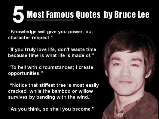 What makes Bruce Lee so special